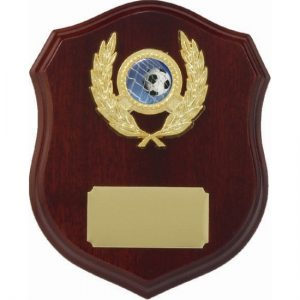 Timber Shield