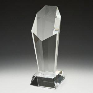 Endurance Award