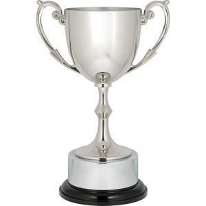Recognition Cups