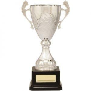 Silver Eternal Cups