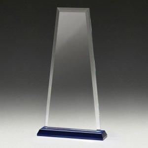 Guardian Award – Blue