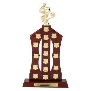 Perpetual Trophies & Shields